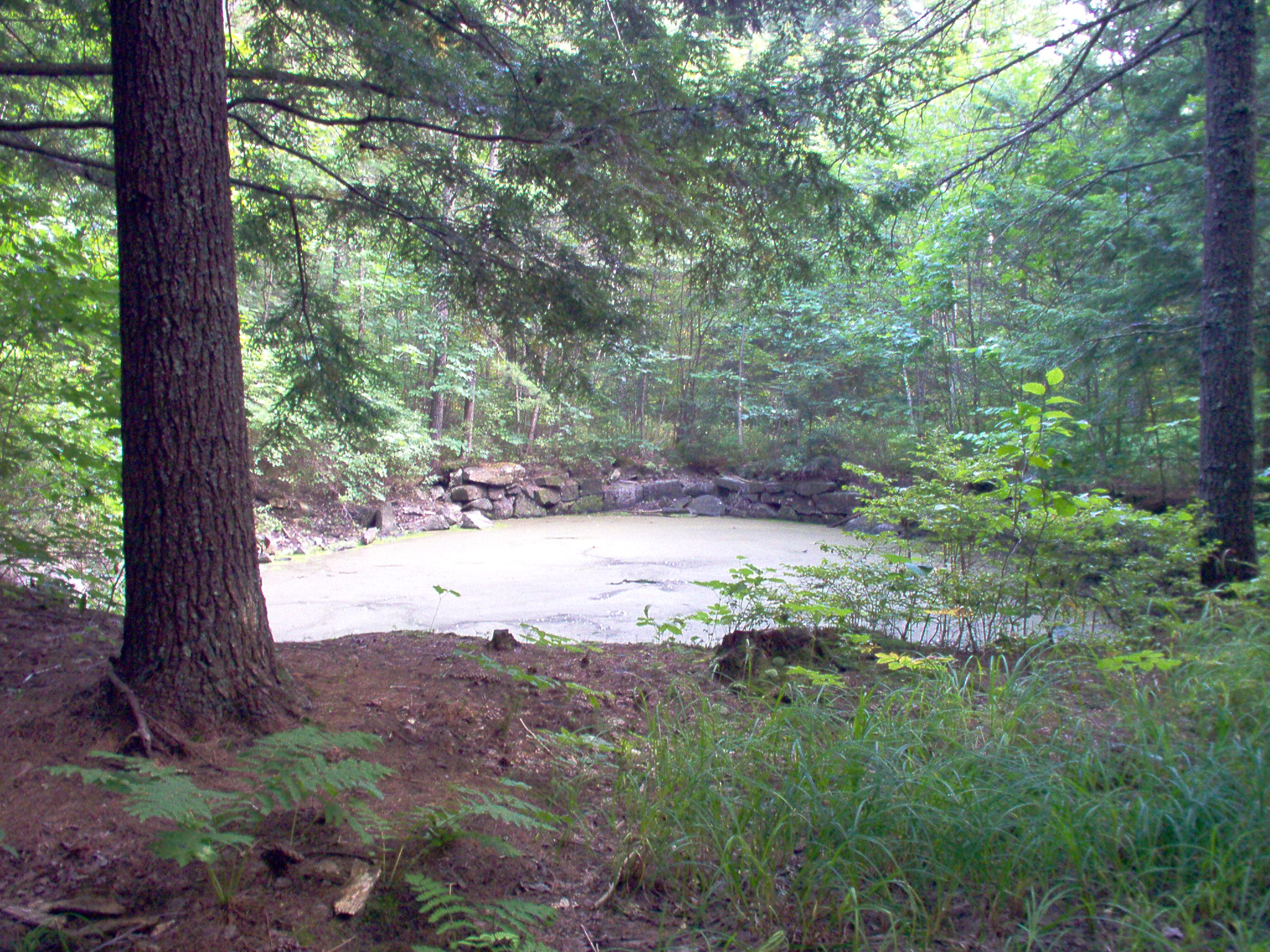 Private Pond on back acre